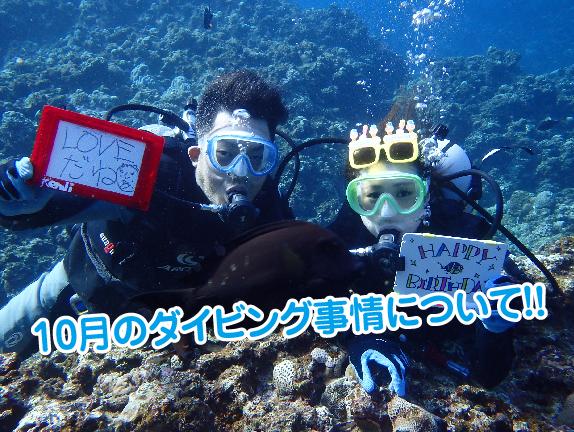 9月ダイビング1-01