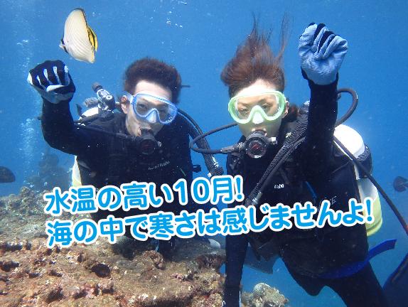9月ダイビング2-01