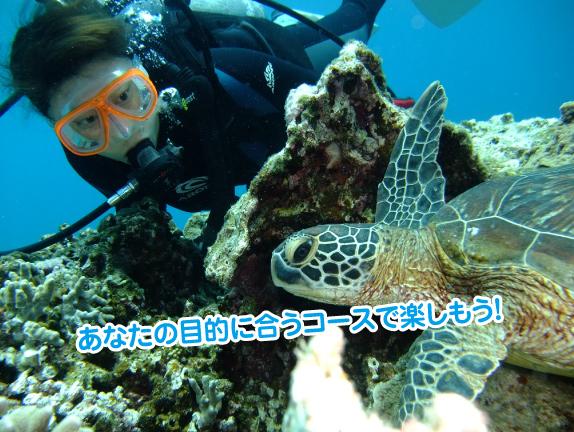 diving-mokutei