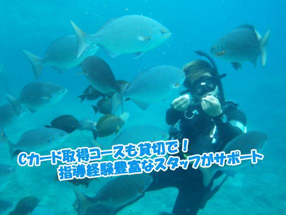 fan-diving