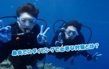 diving-kappuru