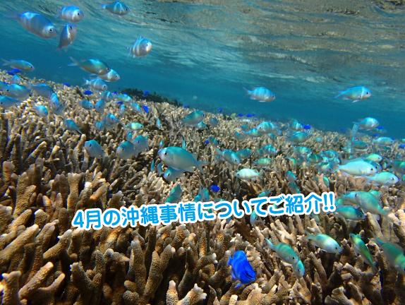 4gatu-okinawa