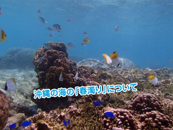 okinawa-harunigori