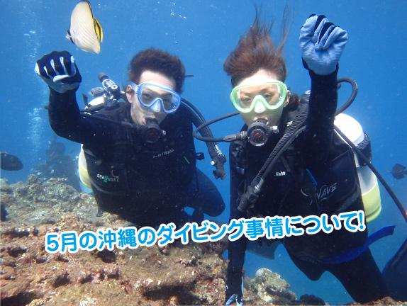 diving-5gatu