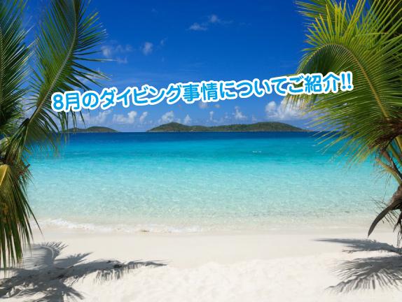 8gatu-okinawa-diving