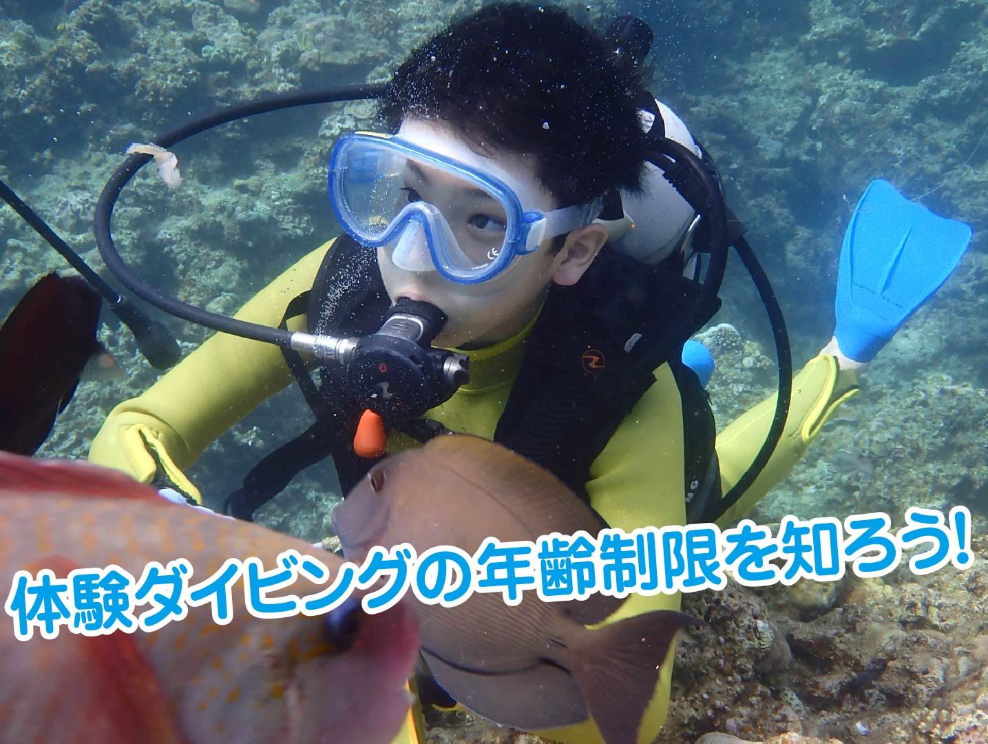 魚とダイビングをする子ども