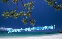 沖縄 砂浜