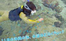 水温 海中