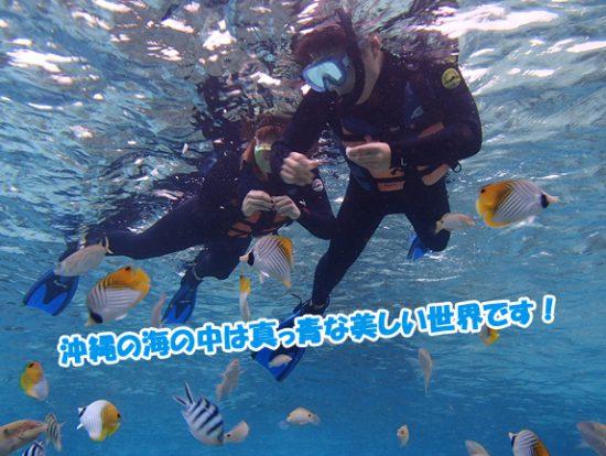 水中 ダイビング